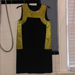 Tibi dress. Great for a party or 20s costume